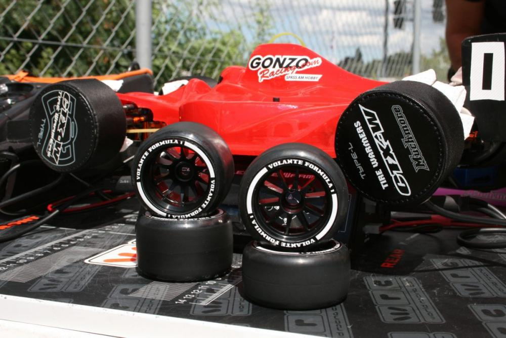 F1_gonzo.jpg